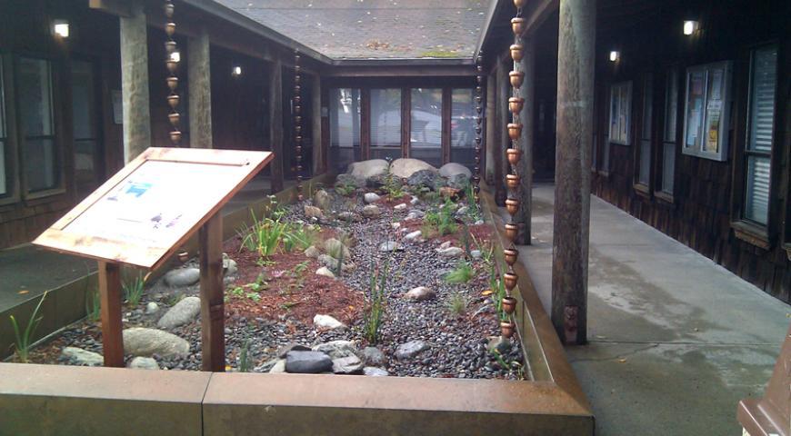 Trinidad Rancheria Rain Garden Project