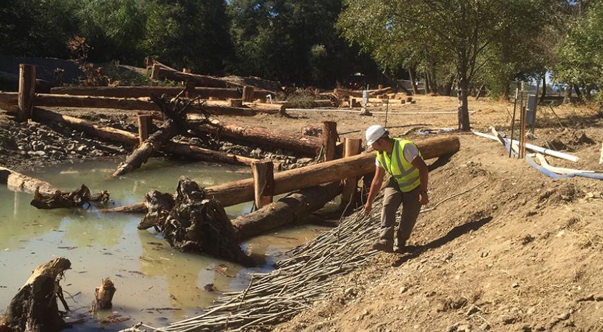 Sonoma County Water Agencies Dry Creek Habitat Enhancement Phase III Project