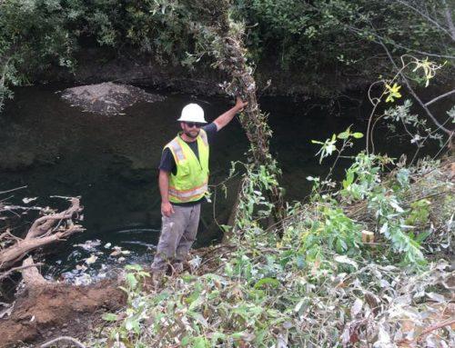 Ten Mile South Fork Enhancement Project